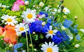 1flowers