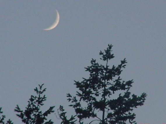 1crescent moon_195933032_o (2)